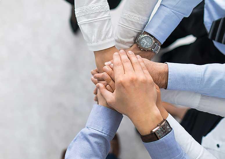 Partnerzy Unidex